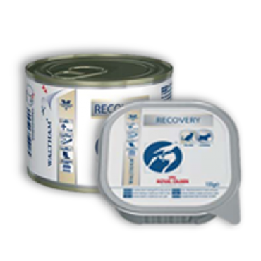Patê Royal Canin Dog Recovery - Cats/Dogs 195g